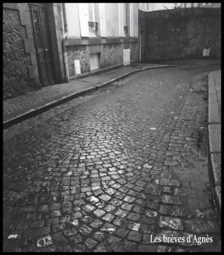 rue_paveeRender(4)